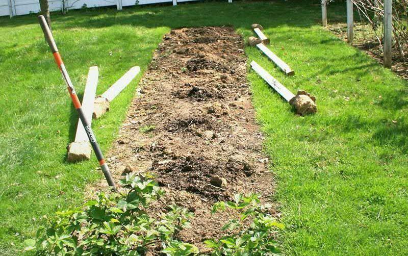 Подготовка садового участка